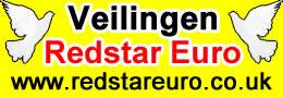 Redstar Euro Auctions