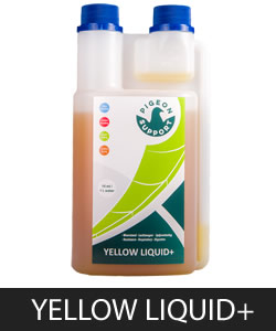 Yellow Liquid+